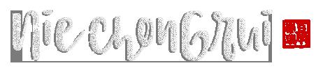 niechongrui.com